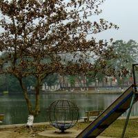 trung tâm thị trấn Mậu A, Нам-Динх