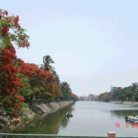 The Beautiful Flamboyant City !, Хайфон