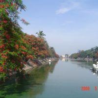 Mùa hoa phượng vĩ bên sông Lấp Hải phòng, Хайфон