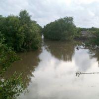 Con rạch cung cấp nước cho khu nuôi tôm công nghiệp huyện Duyên Hải, Нячанг