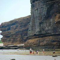 Khai thác hải sản ở bãi triều thuộc bờ Bắc đảo Lý Sơn, Винь