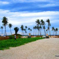 Địa hình đồng bằng ở phần Nam đảo Lý Sơn, Винь