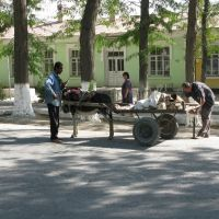 Fergana, street, road breakdown, Алтынкуль