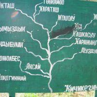 Pum, map, Алтынкуль