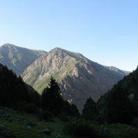 Kulp, Shate ravine (view N), Алтынкуль