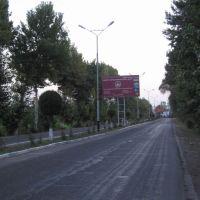 Road to Osh airport, Алтынкуль