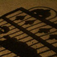 The shadow gate, Бухара