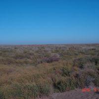 разливы аму-бухарского канала, Газли