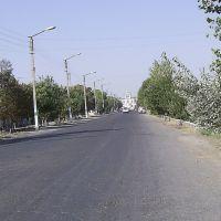 Улица Ордженекидзе, Каган