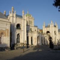 Бывший дворец брата царя Николая 2, Каган