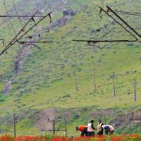 M 39 Portes de Tamerlan : des ouvriers réparent la voie ferrée, Заамин