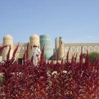 Khiva-flowers and OtaDarvoza, Мангит