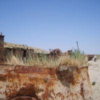 abandoned fishing boats, Муйнак