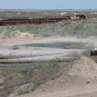 Aral Sea, Муйнак
