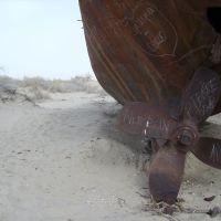 Корабли в пустыне, Муйнак