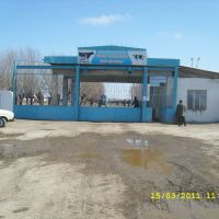 Ленинабат, мал-базар., Чимбай