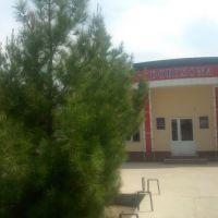 "Аптека ""Firuz ishonch"", Бешкент"
