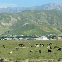 La route de Shakhrisabz à Samarcande, Касан