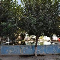Fergana, Uzbekistan., Касансай