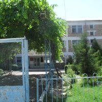 Школа имени Сатылганова, Учкурган