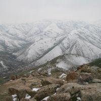Mauntains near Samarkand, Красногвардейск