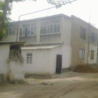 У дома 16 на ул. Пушкина, Денау