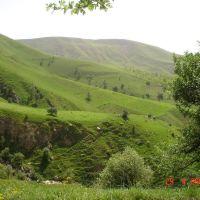 Zhdanov gorge, Карлук