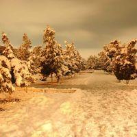 Winter in Central Termez, Термез