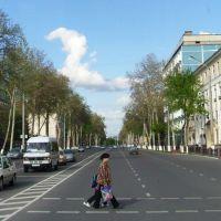 Нукусская улица, Верхневолынское