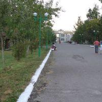 Парк, Гулистан
