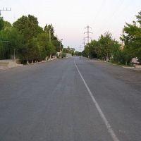Улица Сайхун (Пушкина), Гулистан