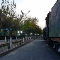 Вечер в музее, Димитровское