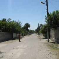 улица к Пахта банку, Сырдарья