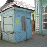 Сапожная будка - без сапожника, Сырьдарья