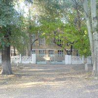 Школа №14 имени Титова. Во времена СССР центральные ворота школы, Алмалык