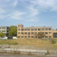 Развалины алмалыкского завода бытовой химии (4), Алмалык