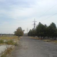 Развалины алмалыкского завода бытовой химии (2), Алмалык