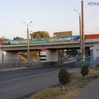 Железнодорожный мост, Алмалык