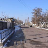 Цемзаводские, Ахангаран