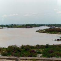 Syr Daria, Бука