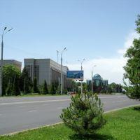 Проспект космонавтов., Бука
