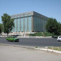 Tashkent Museum of the Arts, Бука