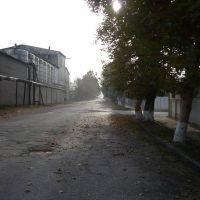 У винного завода, Газалкент