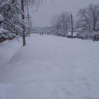 Зима в Газалкенте, Газалкент
