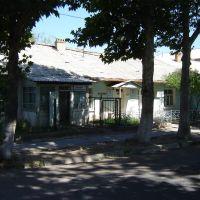 Детская библиотека, Газалкент