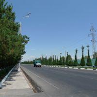 Tashkent My Parents House, Ташкент
