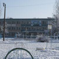 Школа 255, Ташкент