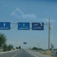 Going to Tashkent Form Samarkand, Чиназ