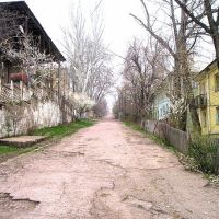 дорога по улице Маяковского, Янгиабад