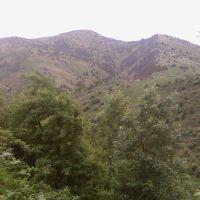 Три горы, Янгиабад